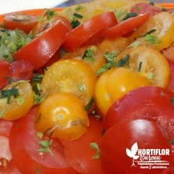 Kit 6 Tomates 'Grains de...